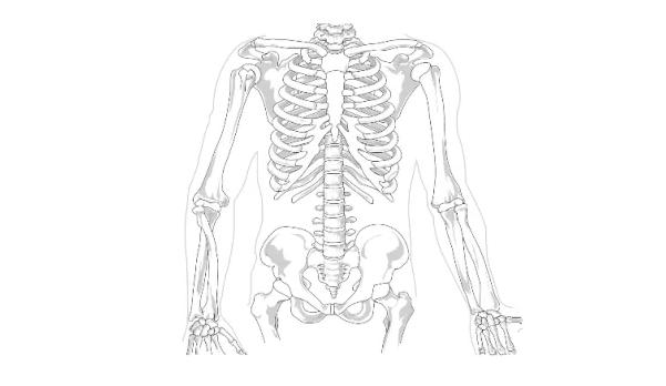 鈣片推薦-骨質疏鬆-懷孕補鈣-2018-2019-品牌成分比較-天然萃取海藻鈣