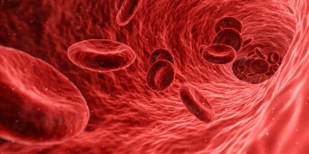 貧血症狀-貧血改善與治療-貧血定義-六大貧血類型 2019-2020整理推薦