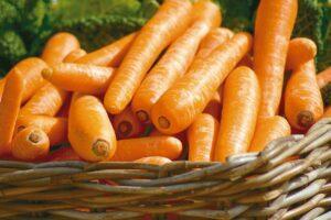 抗氧化食物排名-最強抗氧化食物-抗氧化食物好處-抗氧化食物第一名-十大抗氧化食物-抗氧化水果-抗氧化蔬菜-2020抗氧化食物推薦-2021抗氧化食物推薦