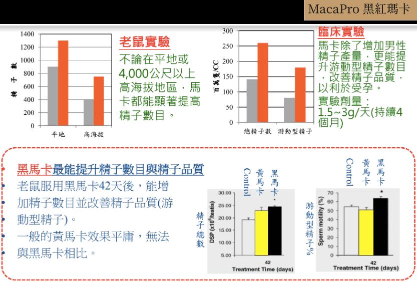 瑪卡馬卡-黑瑪卡-壯陽-男性備孕-勃起障礙-瑪卡怎麼吃-強化超級瑪卡-2019-2020-2021-ptt-好市多-屈臣氏-線上品牌-評價-比較-功效-推薦